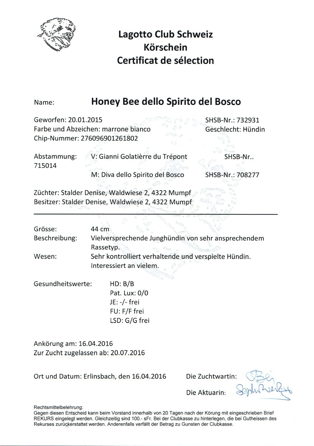 HoneyBeeUnterlagen