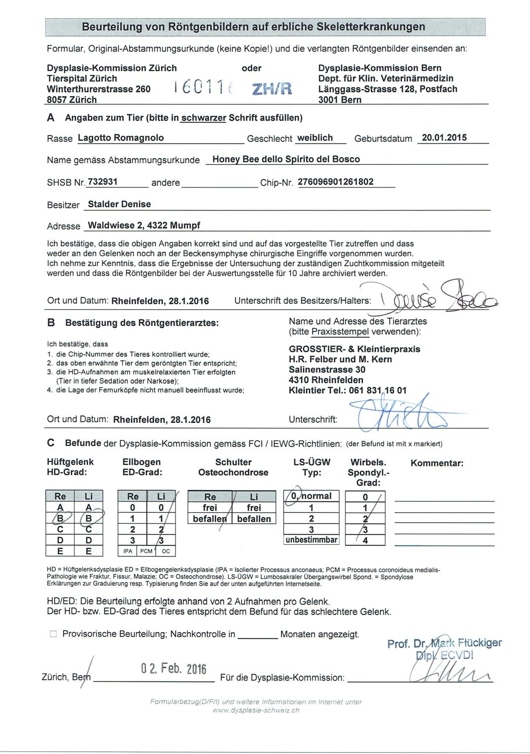 HoneyBeeUnterlagen_0006